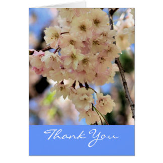 Pink Spring Blossoms Flower Thank You Card
