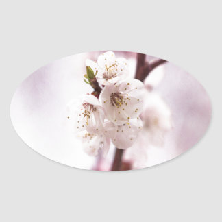 Pink spring blossoms oval sticker