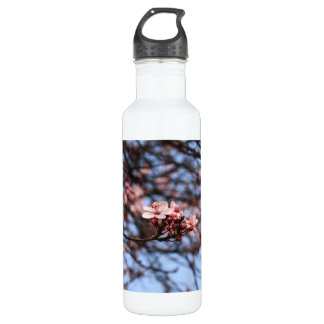 pink spring blossoms stainless steel water bottle