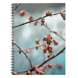Pink Spring Buds on Blue Notebooks