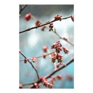 Pink Spring Buds on Blue Stationery Design