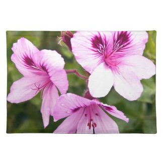Pink spring charms cloth place mat