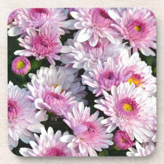 Pink spring chrysanthemum flowers coaster