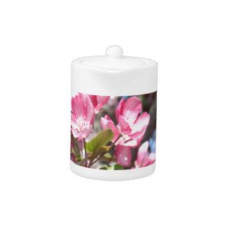 Pink Spring Flower Blossoms Teapot