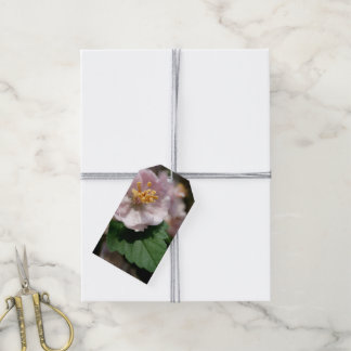 Pink Spring Flower with Leaf Gift Tags