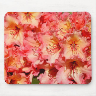 Pink spring rhododendrons print mousepad