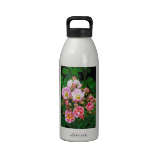 Pink spring roses in bloom water bottle