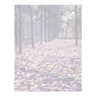 Pink Springtime in the Lange Voorhout area, The Ne Letterhead