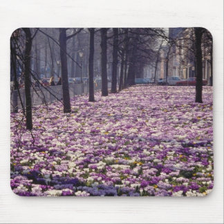 Pink Springtime in the Lange Voorhout area, The Ne Mouse Pad