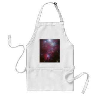 Pink Star Cluster Nebula Adult Apron