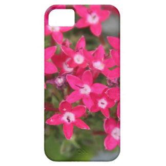 Pink Star Flower iPhone SE/5/5s Case