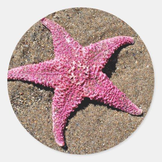 Pink Starfish Classic Round Sticker