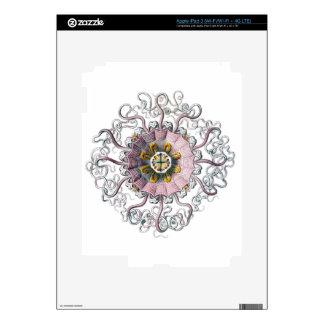Pink starfish iPad 3 skin