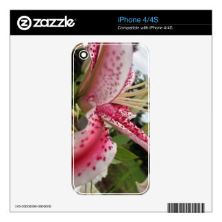pink stargazer and sky decal for the iPhone 4S