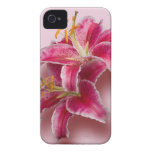 Pink Stargazer Lilies Case-Mate iPhone 4 Cases