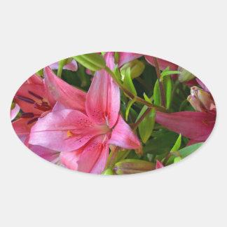 Pink stargazer lilies oval sticker