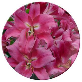 Pink stargazer lilies plate
