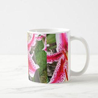 Pink Stargazer Lilly Mugs