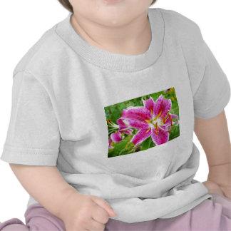 Pink Stargazer Lilly Tshirts