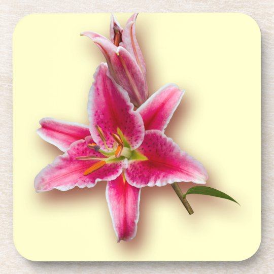 Pink Stargazer Lily and Bud Beverage Coaster