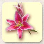 Pink Stargazer Lily and Bud Beverage Coasters