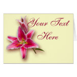 Pink Stargazer Lily and Bud Greeting Card