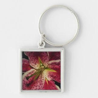 Pink Stargazer Lily Key Chain