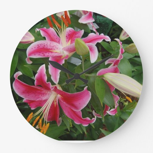 Pink Stargazer Lily Large Clock