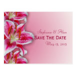 Pink Stargazer Save The Date Postcard