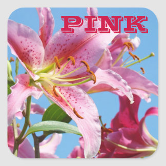 PINK stickers Pink Lily Flowers Pink Awareness