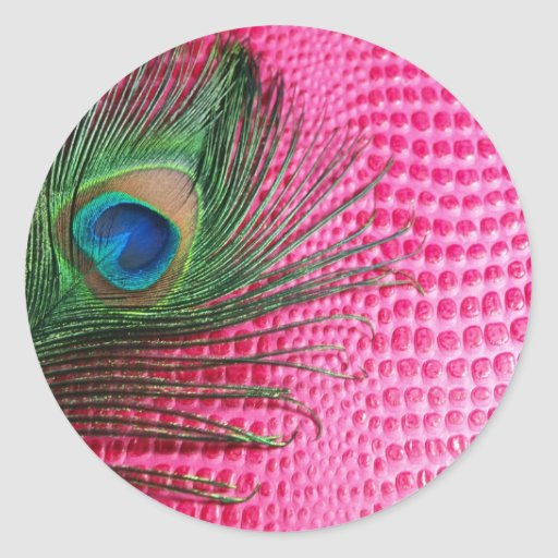 Pink Still Life with Peacock Feather Classic Round Sticker