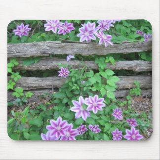 Pink Striped Clematis on the old fence Mouse Pad