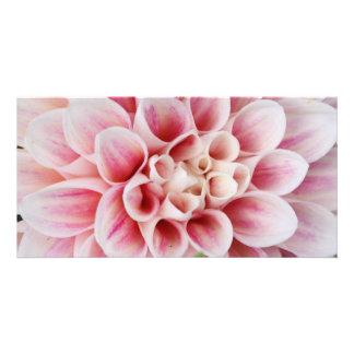 pink striped dahlia custom photo card
