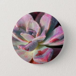 Pink Succulent Pinback Button