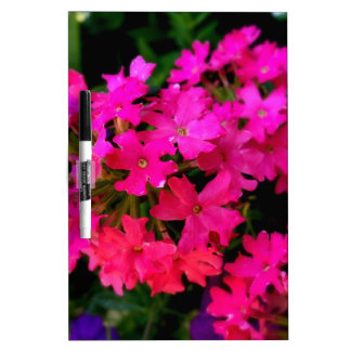 Pink Summer Flowers Photo on various products Dry-Erase Board