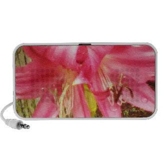 Pink Summer Lilies Floral Botanical Mp3 Speaker