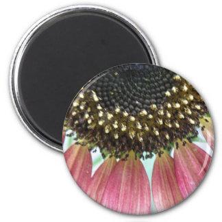 Pink Sunflower Magnet