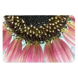 Pink Sunflower Premium Magnet