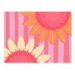 Pink Sunflower Stripe Postcard