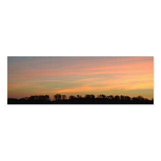 Pink Sunrise Mini Business Card