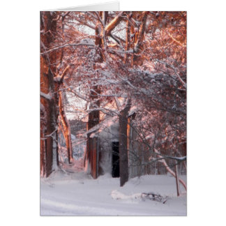 Pink Sunrise on the Snow Winter Photo Greeting Card