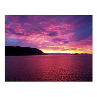 Pink Sunrise Postcard