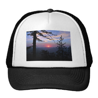Pink sunset with pine trees and clouds hat
