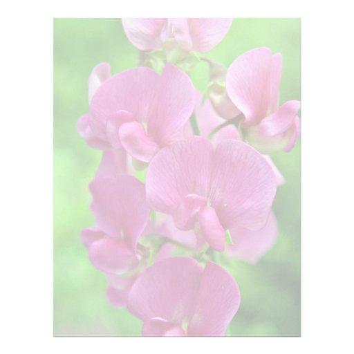 Pink Sweet Pea flowers Personalized Letterhead