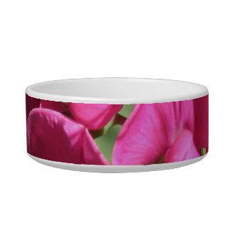 Pink Sweet Pea Pet Bowl Cat Water Bowls