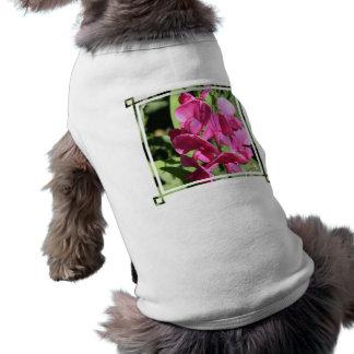 Pink Sweet Pea Pet Shirt