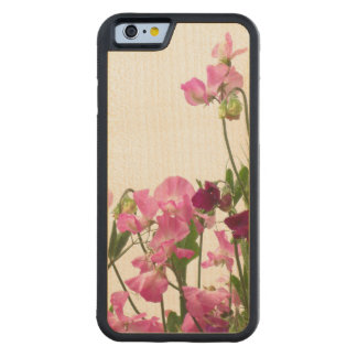 Pink Sweet Peas Carved Maple iPhone 6 Bumper Case