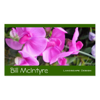Pink Sweetpeas garden landscape Double-Sided Standard Business Cards (Pack Of 100)