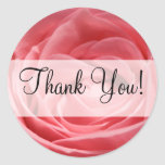 """Pink Tea Rose with """"Thank You!"""" banner Round Stickers"""