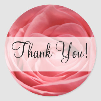 "Pink Tea Rose with ""Thank You!"" banner Round Stickers"